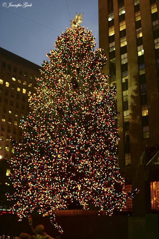 Tree at Rockefeller Center.