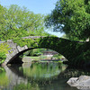 Gastow bridge - Central Park