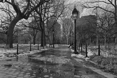 Washington Square Park NYC   Feb 2011