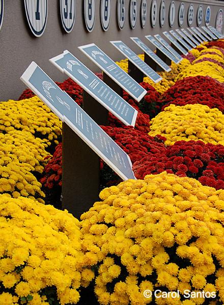 Memorial row at Yankee Stadium