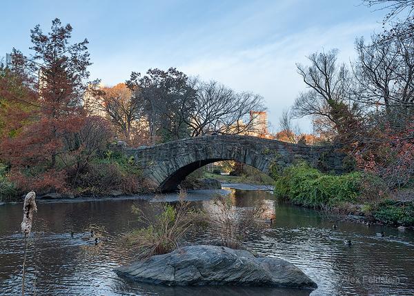 Gapstow Bridge - early morning - Central Park