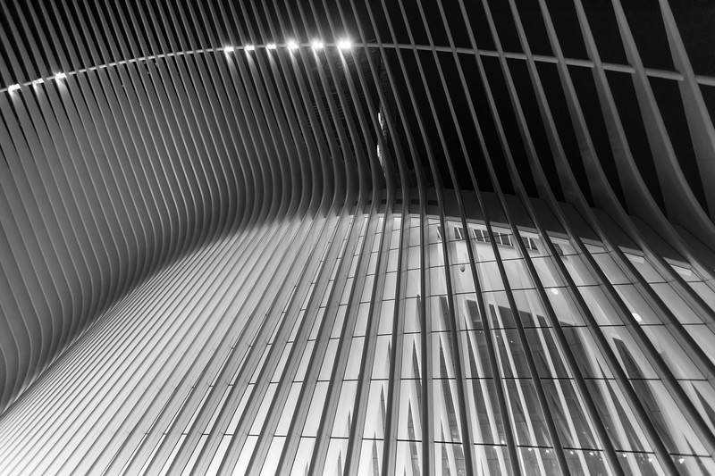 Outside the Oculus