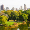 View from Belvedere Castle in Central Park.