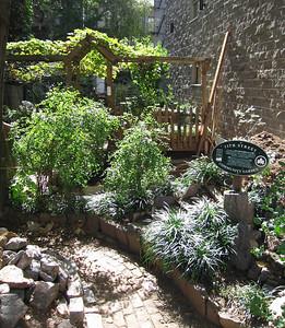 11th St. Community Garden, Manhattan. 14 Oct 2007