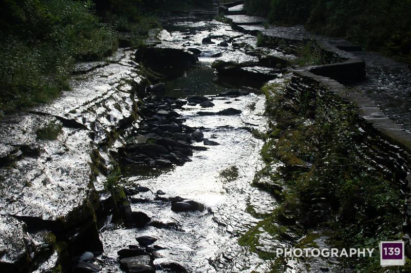 Watkins Glen - Personal Photo Project #199