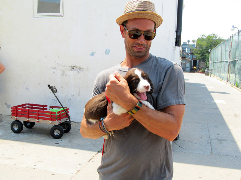 Cute pups and wagons, Fire Island, NY 7.17.12 Copyright Sue Steinbrook