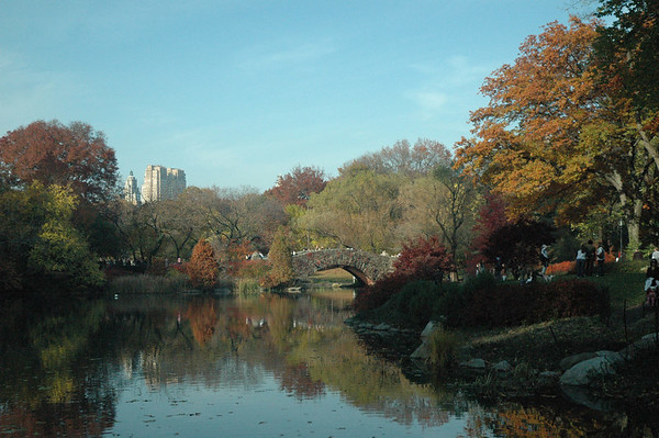 Beautiful fall day in Central Park
