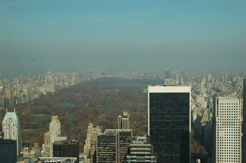 Central park view from the Top of the Rock (Rockefeller Center)