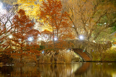 Night time image of Gapstow Bridge in New York City's Central Park at night