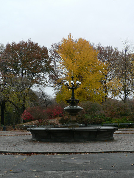 I visited Central park in mid-November - still an oasis in urban New York, but it would look better in my photos with a little sun!