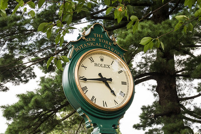 The Botanical Gardens Official Clock