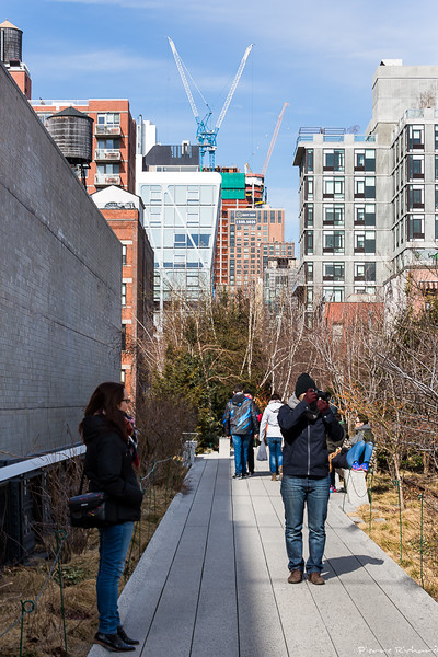 Welcome to the High Line