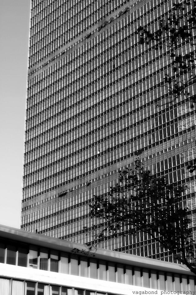The UN Building.