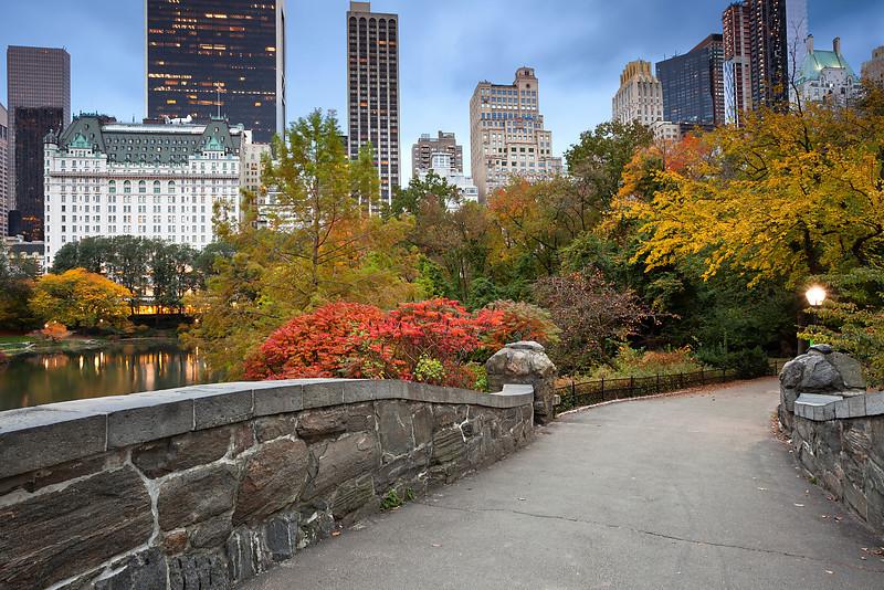 New York Autumn.