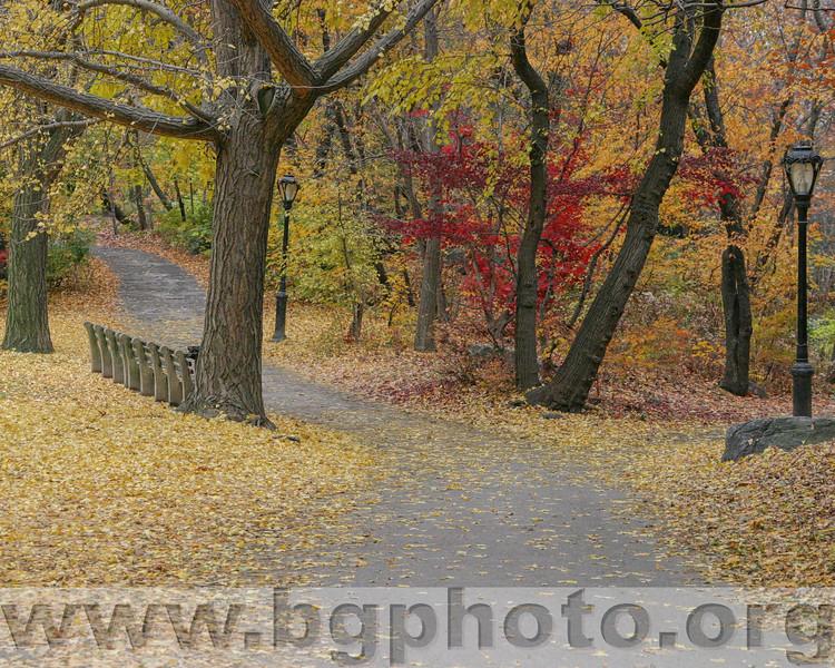 Central Park 007