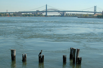 East River, looking toward Triboro Bridge and Hell Gate - September, 2010