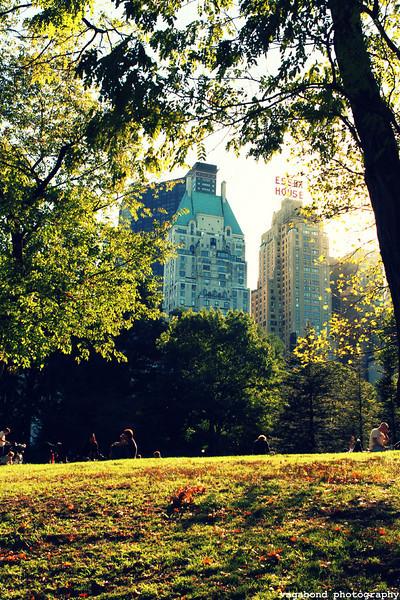 Lovely Central Park!
