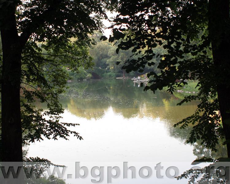 Central Park 003