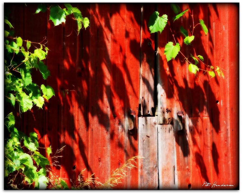 Prince Edward County Barn