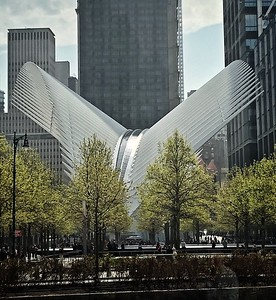 The World Trade Center Transportation Hub (The Oculus)