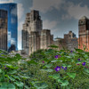 An surreal HDR which is just as surreal as being in central park in the middle of the city.  <br /> Central Park