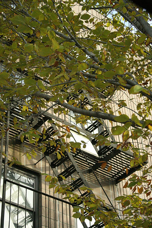 New York/Pennsylvania Oct 07