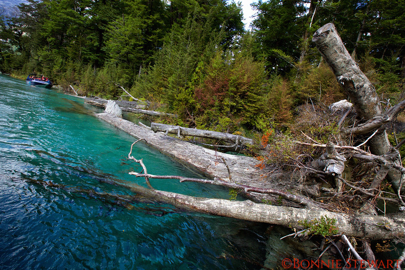 Visit to the Blue Glacier Water Coves along the Dart River