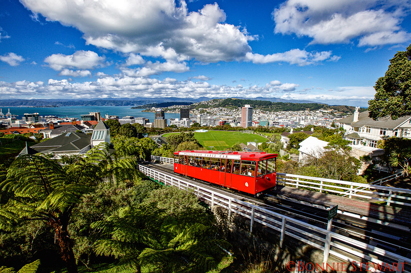 View of Wellington with Cable Car