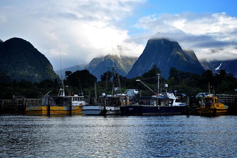 New Zealand '16 -  23
