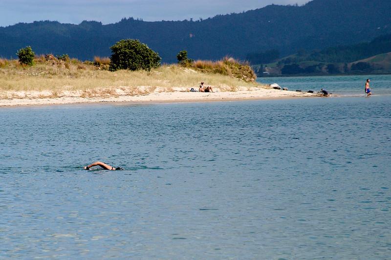Swimming in Opra Bay, sheltered and calm, near Kuaotunu.