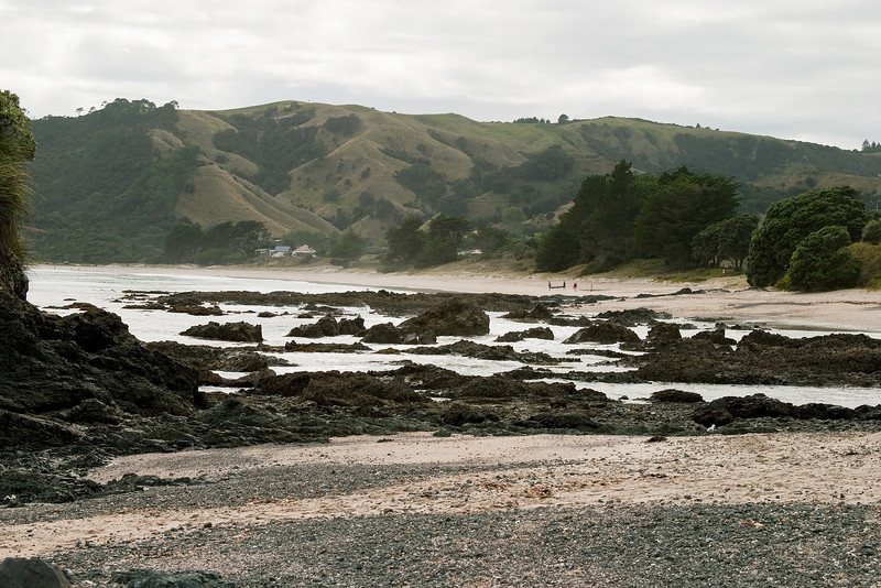 A cloudy and windy day at another park preserve with nature trails on the Coromandel.