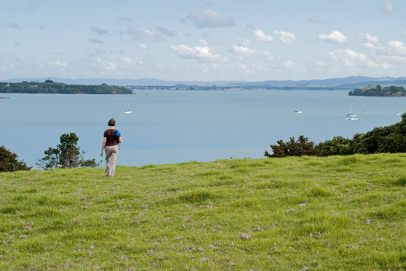 On our second trip to New Zealand, our first stop was at Parua Homestay B & B in the Whangheri region, about a three hour drive north of Auckland.  This is the extended front lawn of the B & B, overlooking Parua Bay.