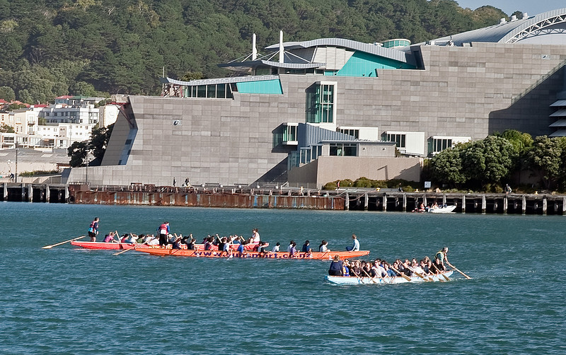Three dragon boats practicing in Wellington harbor.  A portion of the huge Te Papa museum is in the background.