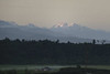 Looking towards the Southern Alps, Mount Tasman and Mount Cook.