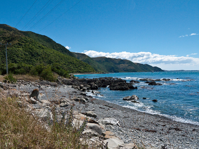 Along Highway 1 between Christchurch and Kaikoura