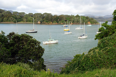 Paihia Harbor