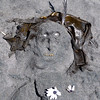 Sand lady on the beach, by Judy and Chloe.