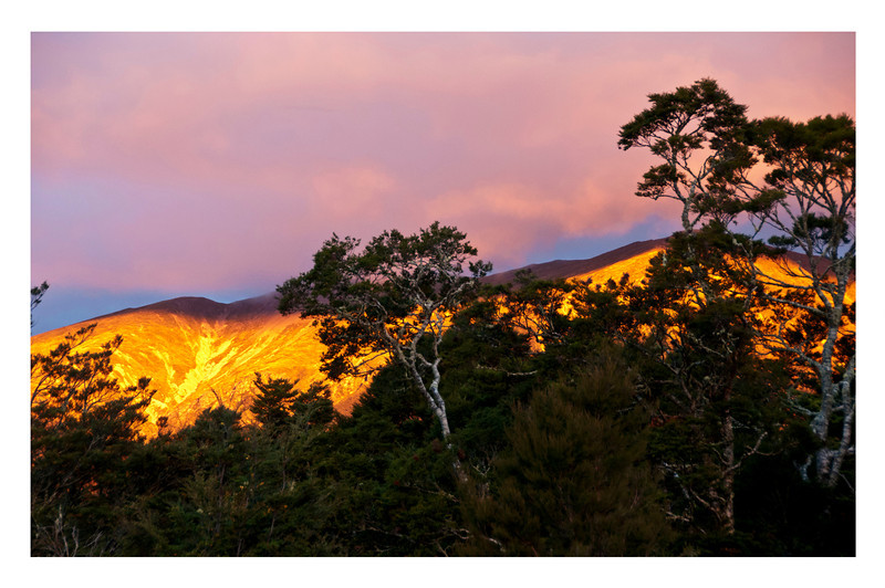 SUNRISE IN ST. ARNAUD, NZ