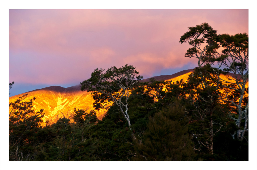 SUNRISE IN ST. ARNAUD, NZ
