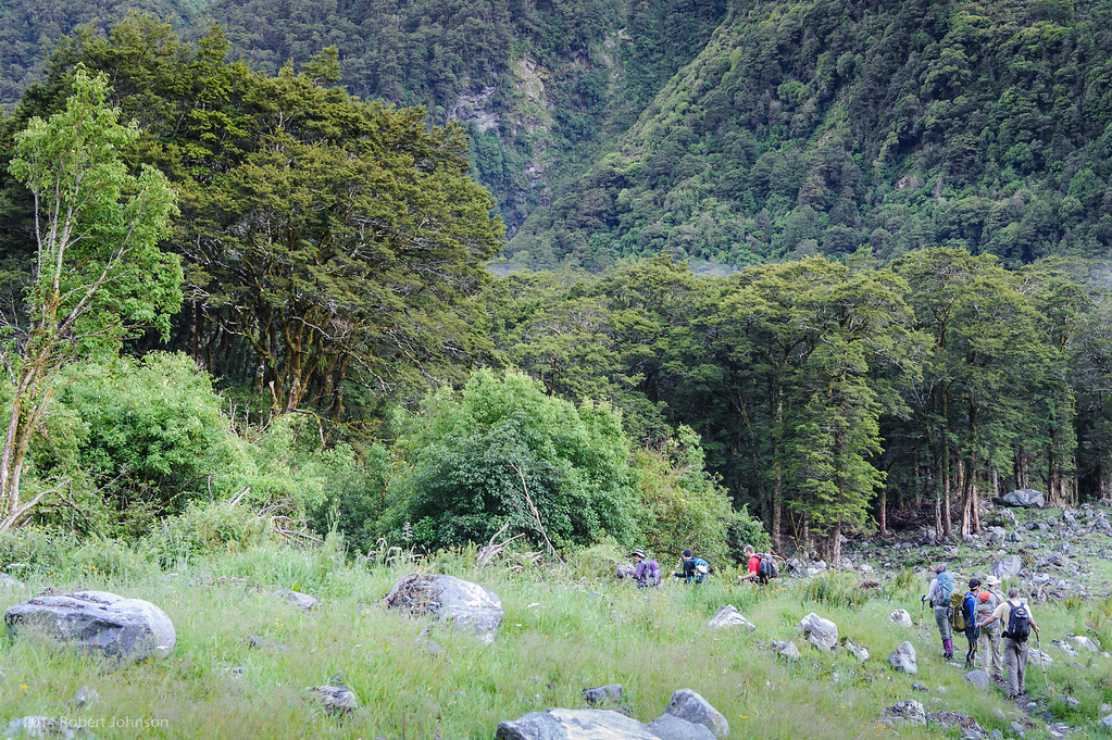 The start of day three on the Milford Track