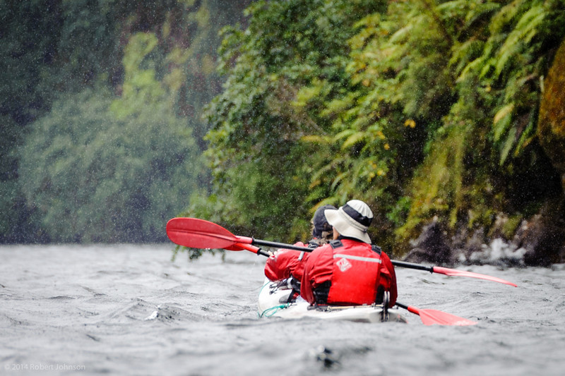 Kayakers in the rain; Doubtful Sound gets about 7 m of rain per year!