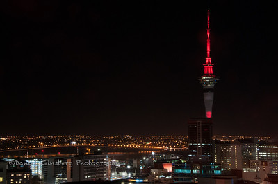 Sky Tower in Auckland at night.