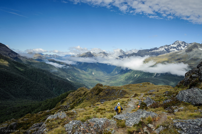 View of the Hollyford Valley from the Routeburn Track