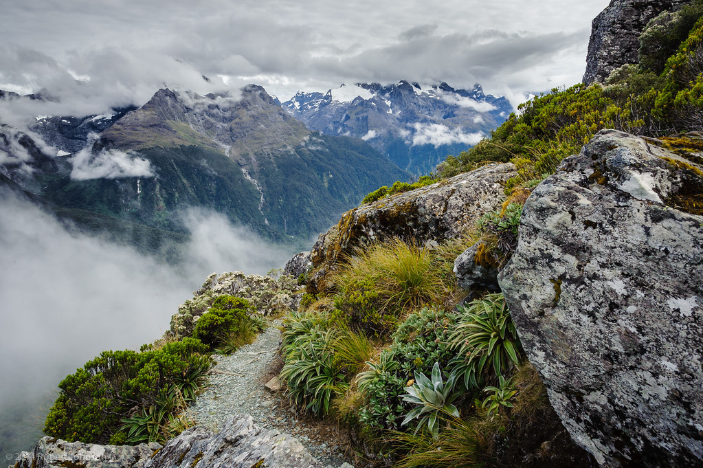 View from the Routeburn Track