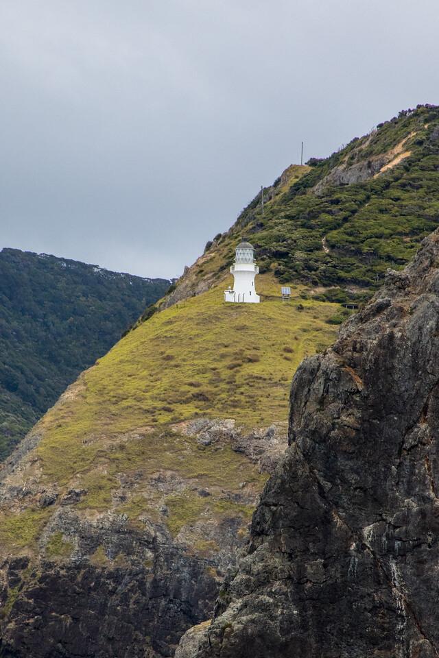 NZ_BayofIslands-6324
