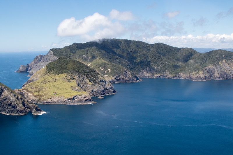 NZ_BayofIslands-5597