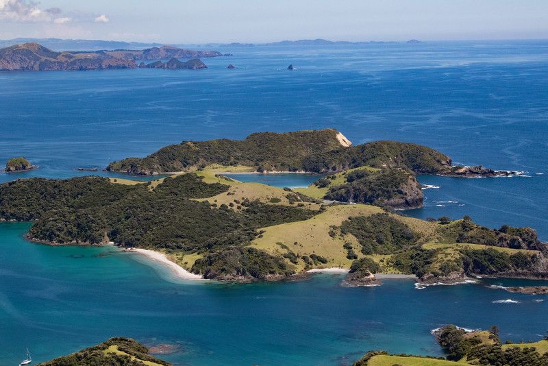 NZ_BayofIslands-5575