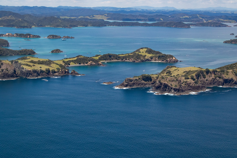 NZ_BayofIslands-5634
