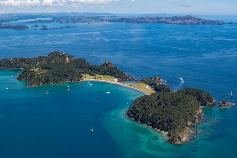NZ_BayofIslands-5556