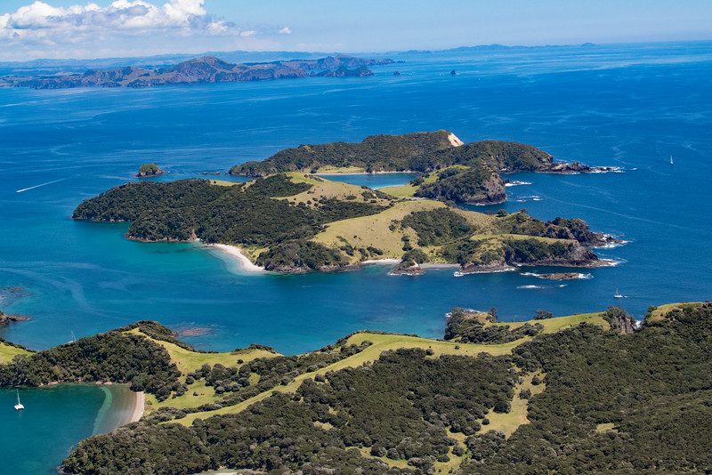 NZ_BayofIslands-5576